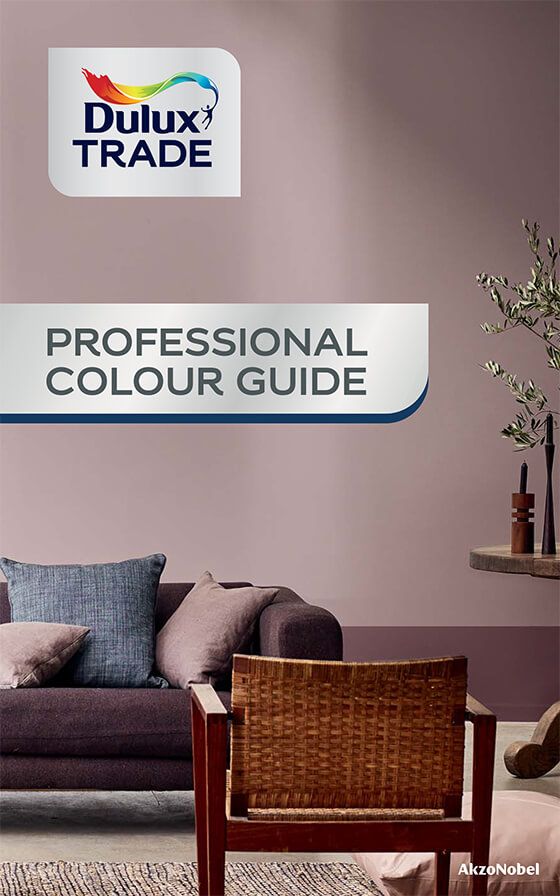Professional Colour Guide